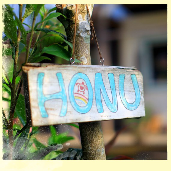 HonuHome-d